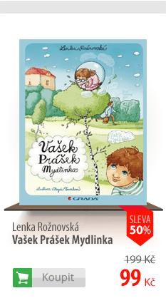 Vašek Prášek Mydlinka kniha