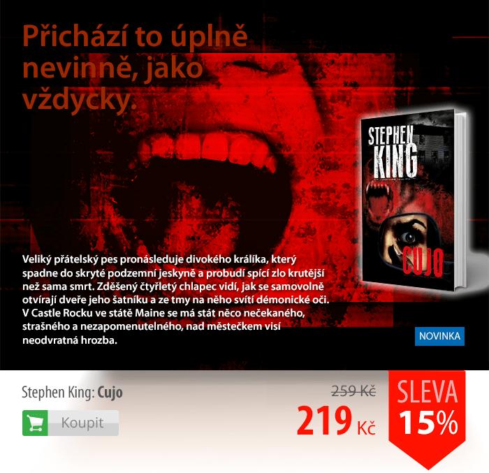 Stephen King Cujo kniha
