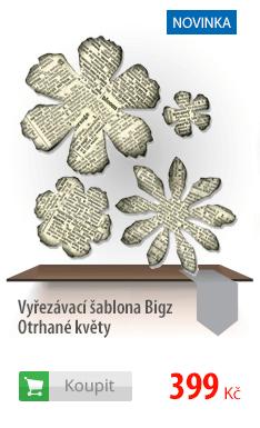 Vyřezávací šablona Bigz květy