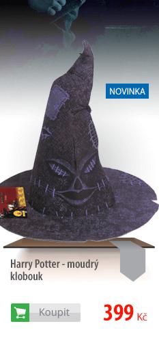 Moudrý klobouk