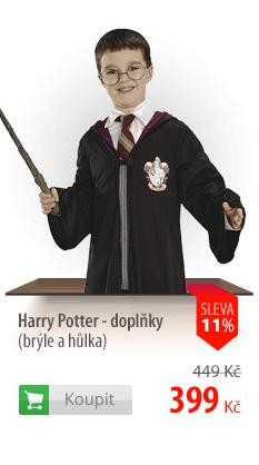 Harry Potter brýle a hůlka