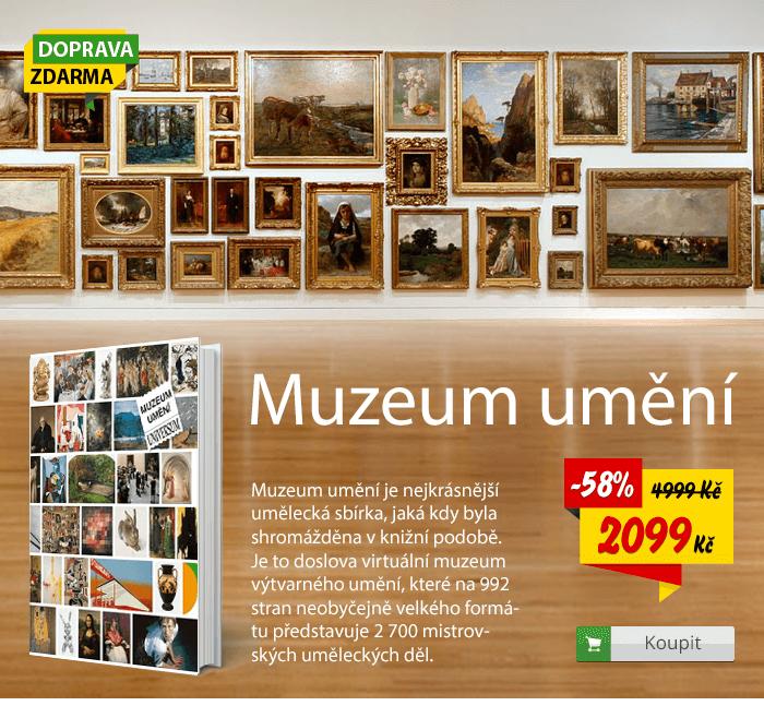Muzeum umění umělecká sbírka