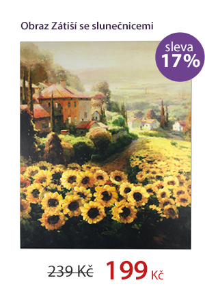Obraz Zátiší se slunečnicemi